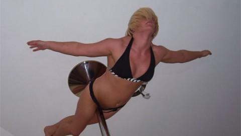 A Pole Dancers Story