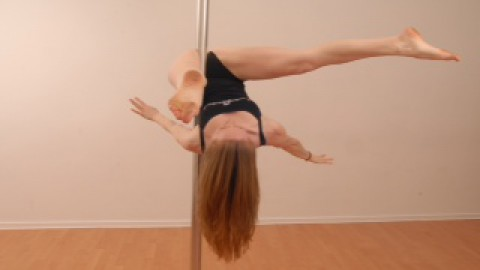 Pole Move Inverted Teddy